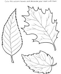 maple leaf coloring page fall leaves color pages printable free co