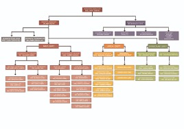 Organization Chart Htco