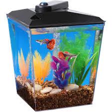 Fun Fish Tank Decorations Aqua Culture 1 Gallon Aquarium Starter Kit Walmartcom