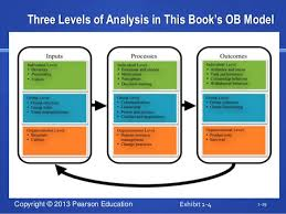 organizational behavior chapter  1 28 29