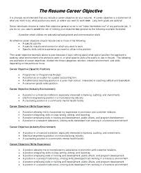 Resume Objective Statement Examples Resume Purpose Statement