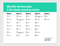 Exercise Daily Routine Chart Amazon