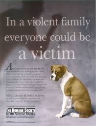 the animal rights action site stopping animal cruelty in the home image detail
