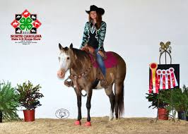 Nc State 4 H Horse Show Champions Crowned Nc State Extension
