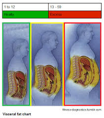 Visceral Fat Chart Visceral Fat May Work Against The Alzheimers Diet The Ad