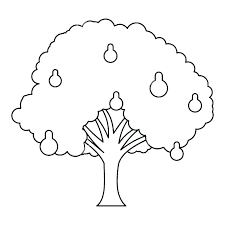 Branch Template Tree Branch Template Coloring Page Blossom Branches With