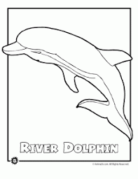 Endangered Ocean Animal Coloring Pages Animal Jr