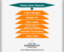 Accounting Career Progression Chart Career Levels In Accounting Hierarchy Chart
