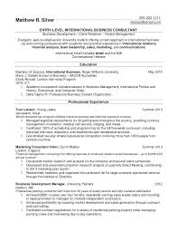 Best College Resume Enchanting Best Resume Templates For College Students Internships Business