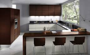 Laminate For Kitchen Cabinets Laminate Kitchen Cabinets Bjly Home Interiors Furnitures Ideas