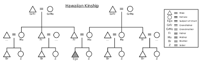 Hawaiian Kinship Wikivisually