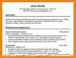 How To Write Career Summary In Resume Filename New Company