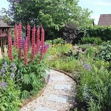 backyard gardens. Garden Of The Day! Thanks To Allan Mees For Sending Me This Photo. Backyard Gardens A