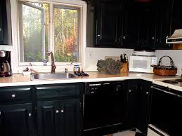 Diy Black Kitchen Cabinets Kitchen Black Kitchen Cabinet Doors Cabinets Should You Replace