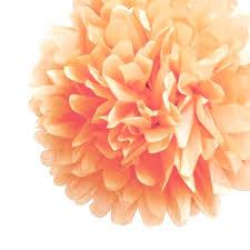 Paper Flower Balls To Hang From Ceiling Tissue Balls How To Make Paper Flower Pom Poms For Weddings