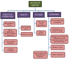 Assets Liabilities Equity Chart Account Group