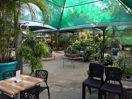 eden gardens cafe and surrounds brisbane northside greensocks