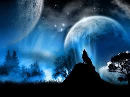 howling wolf wallpaper. Simple Wolf Howling Wolf Wallpaper  Wolves 30858598 Fanpop And Cave