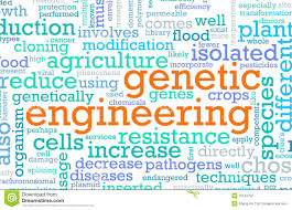 engineering essay genetic engineering essay