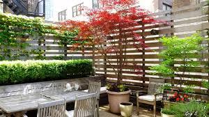 Deck Plants For Maxresdefault