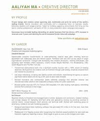 Modern Resume Format From The Best Way To Write Design Resume