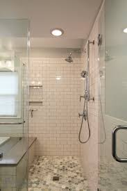 White Subway Tile Walk-in Shower transitional-bathroom