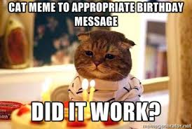 Cat meme to appropriate birthday message Did it work? - Birthday ... via Relatably.com