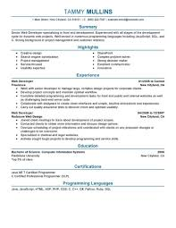 Best Web Developer Resume Example | Livecareer