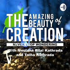 The Amazing Beauty Of Creation Podcast Listen Reviews