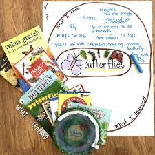 Life Cycle Of A Butterfly Teaching Ideas