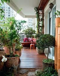 plant on a windy balcony