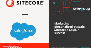 Delivering The Sitecore Experience