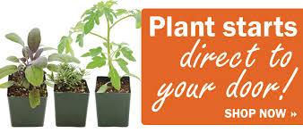 garden seed companies. Vegetable Seeds, Flower Herb Seed, Garden Seed - Territorial Company Companies