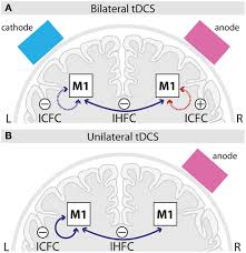 frontiers a comparison between uni and bilateral tdcs effects frontiersin org figure 4 schematic