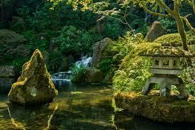 Wallpapers Nature Zen - Venera Wallpaper