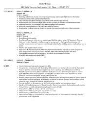 Lead Custodian Cover Letter Sample Proyectoportal Com
