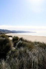 20 Best Things To Do Near Point Reyes Station West Marin