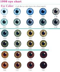 Iris Color Chart Eye Color Chart Eyes Eyecolors In 2019 Eye Color Facts