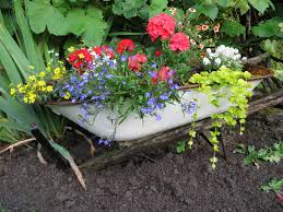 how to plant garden. 7. how to plant garden