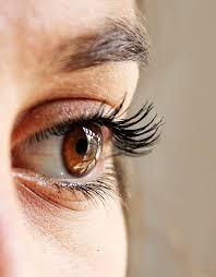 Olympus Eye Associates | Eye Clinic Blog The Differences Between Eye ...