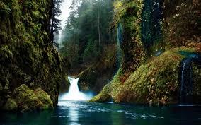 Wallpaper : gorges, waterfalls, moss ...