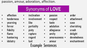 A conscientious objector is an individual who has claimed the right to refuse to perform military service on the grounds of freedom of thought, conscience, or religion. Another Word For Love What Is Another Synonym Word For Love English Grammar Here