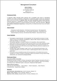 100 People Soft Consultant Resume Consulting Essay Writing