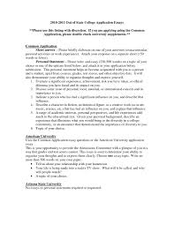 Example Of Admission Essays Best Admission Essay Custom Paper Example 2393 Words