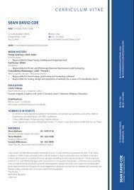 Gallery Of Cv Formats Notes New Latest Cv Format 2013 Simple Cv