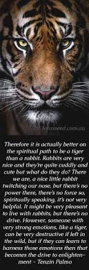 Tiger Quotes 91 Wonderful Tiger Quote Cats Pinterest Tiger Quotes Tigers And Zodiac