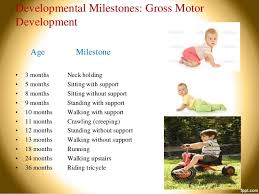 13 Month Development Chart 13 Unbiased Four Month Milestones Chart