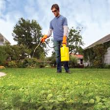 Weed Killer Mixing Chart How To Get Rid Of Weeds In Lawn 6 Tactics The Family