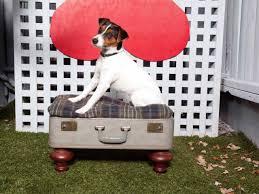 repurpose furniture dog. Vintage Suitcase Turned Dog Bed Repurpose Furniture