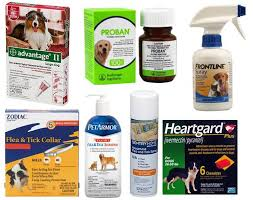 ivermectin for fleas. Fine For Flea Tick Heartworm Parasite Prevention For Dogs Cats U2013 What You Should  Know Before Putting Your Dog Cat On Chemical PesticideBased Preventatives And  Intended Ivermectin For Fleas